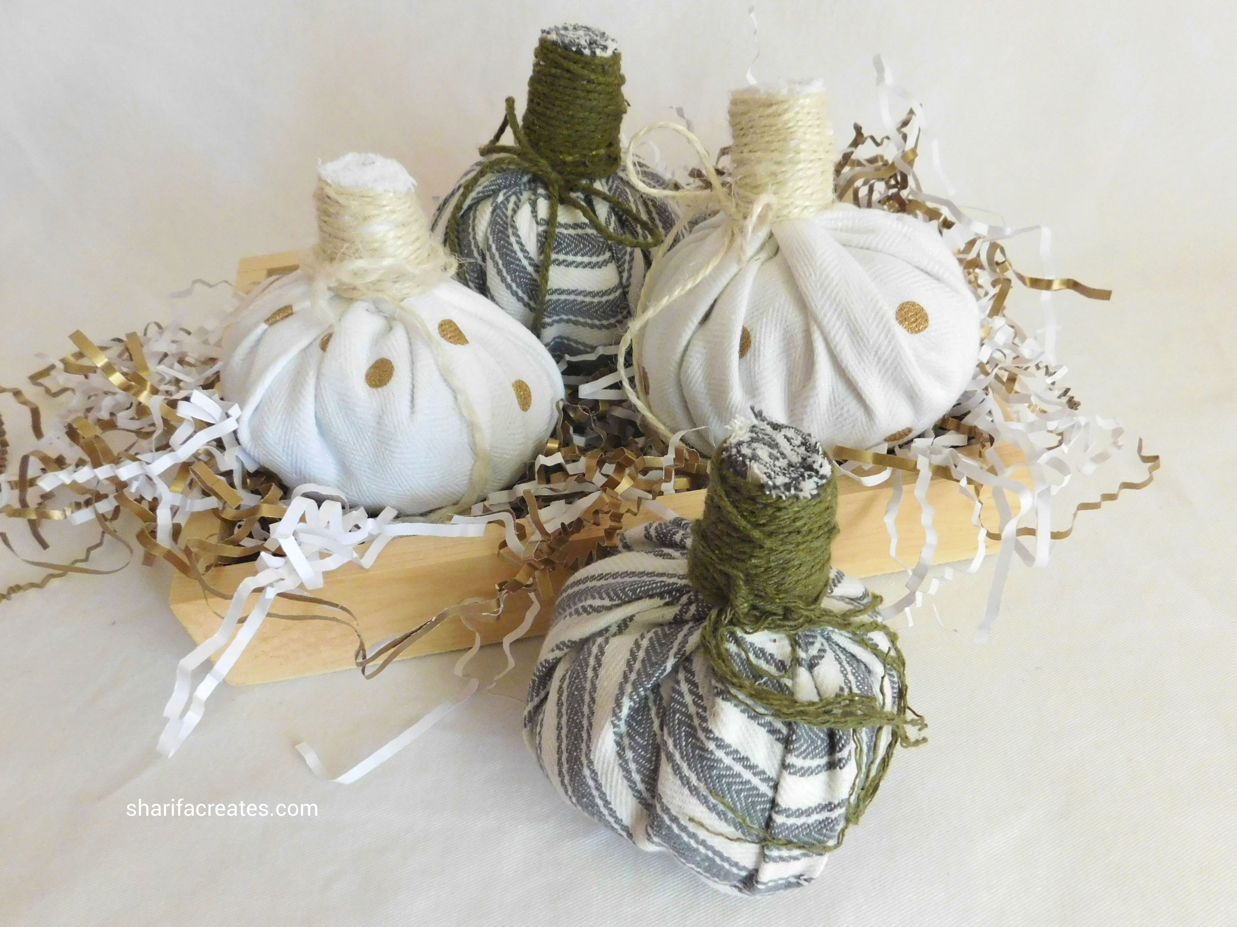 pumpkins (6) cropped